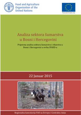 Analiza sektora šumarstva u Bosni i Hercegovini
