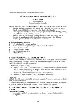 Budenofalk.pdf