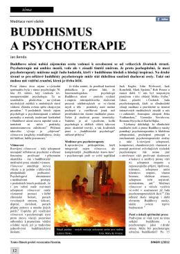Meditace není všelék : Buddhismus a