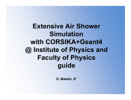 Extensive Air Shower Simulation with CORSIKA+Geant4 @ Institute