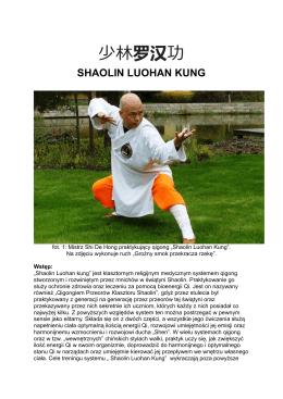 少林罗汉功 - Szkoła Tai Chi i Qigong