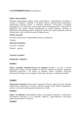 KOBAX.pl - nabytok