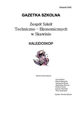 listopad 2010 - Zespół Szkół Techniczno