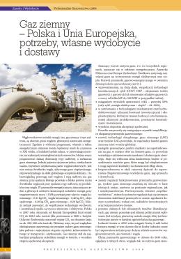 Gaz ziemny – Polska i Unia Europejska, potrzeby, własne