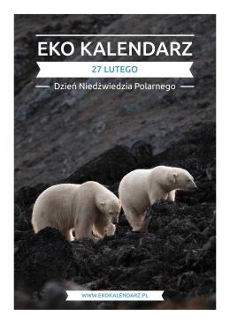 Pakiet edukacyjny - Dzień Niedźwiedzia Polarnego