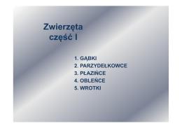 ściągnij - JKK.edu.pl
