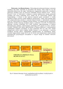 Metody wstępnego przygotowania biomasy do współspalania z
