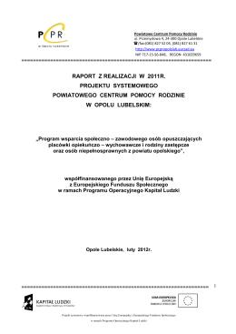 Raport z realizacji projektu 2011