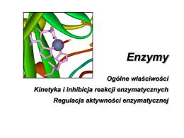 Enzymy jako biokatalizatory