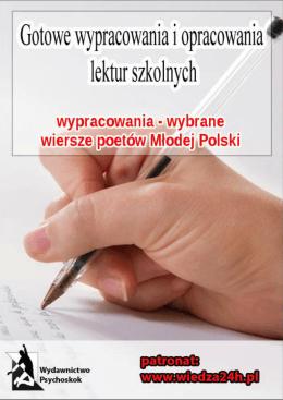 Diagnoza lokalnych zagrożeń społecznych na terenie gminy Mrozy