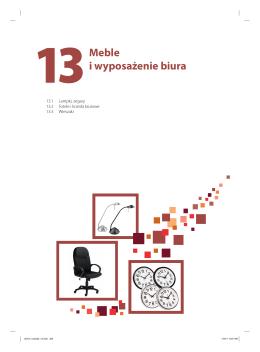 13Meble i wyposażenie biura