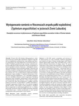 Typhetum angustifoliae - Studia Limnologica et Telmatologica