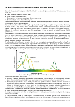 24. Spektrofotometryczne badanie barwników roślinnych. Kolory