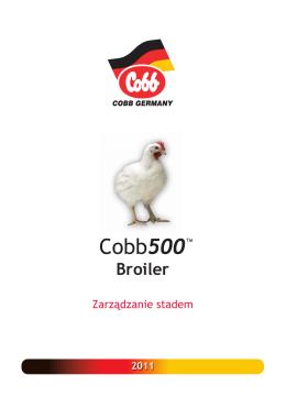 Broiler - zwd malec