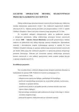 Pobierz opis w formacie PDF
