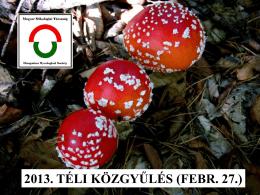 2013. TÉLI KÖZGYŰLÉS (FEBR. 27.)