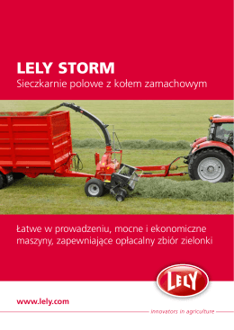 LELY STORM