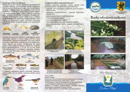 Rzeki włosienicznikowe - Pomorski Zespół Parków Krajobrazowych