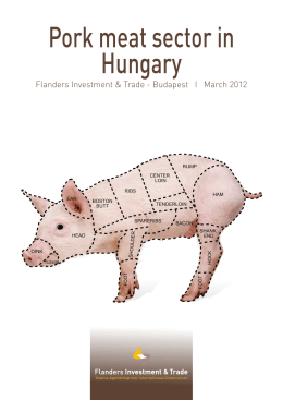 Pork meat sector in Hungary