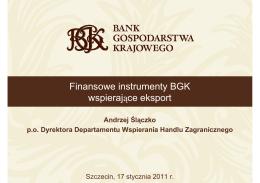 Finansowe instrumenty BGK wspierające eksport
