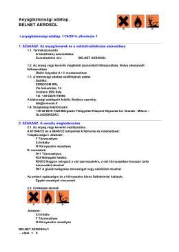 Anyagbiztonsági adatlap. BELNET AEROSOL