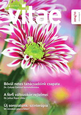 Elérhető az Energy klubmagazin, a Vitae októberi száma!