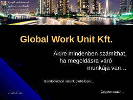 Global Work Unit Kft
