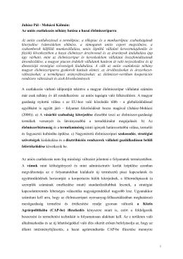 Juhász Pál - Mohácsi Kálmán: Az uniós csatlakozás néhány hatása