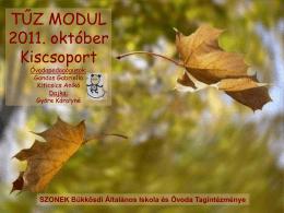 Tűz modul - 2011. október