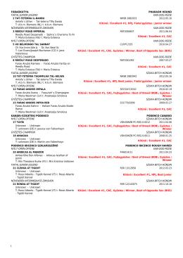 2013.05.18 eredménylista