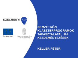 European Cluster Excellence tapasztalatai, eredményei a