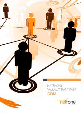 CRM e-book - Netfone Telecom