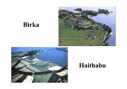 IV. birka, haithabu.pdf