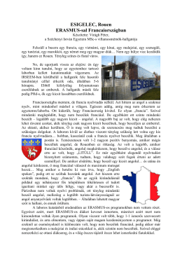 Virágh Péter - Rouen - Széchenyi István Egyetem