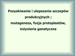 ulotka kompozyt_pl.cdr