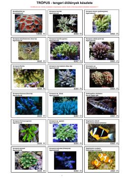 tengeri élő lista
