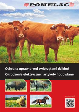 MIEJSKA ENERGETYKA CIEPLNA SPÓŁKA z o. o. w OSTROWCU