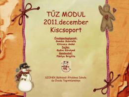 Tűz modul - 2011. december
