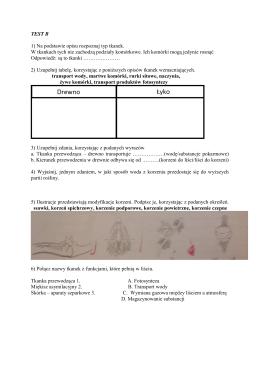 TEST B 1) Na podstawie opisu rozpoznaj typ tkanek. W tkankach