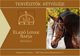 eladó Lovak napja - Magyar Sportló és Magyar Félvér Tenyésztők