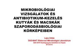 Mikrobiológiai vizsgálatok és antibiotikum
