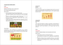 Kukorica katalógus