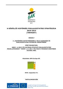 a gödöllői kistérség foglalkoztatási stratégiája 2010