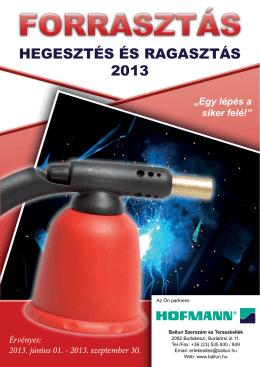 HEGESZTÉS ÉS RAGASZTÁS 2013