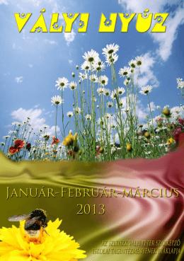 2013.jan-febr-márc - Vályi Péter Szakképző Iskolai Tagintézmény