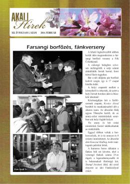 Akali Hírek 2014 február