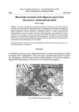Bioeróziós nyomok késő-oligocén (egri) korú Glycymeris