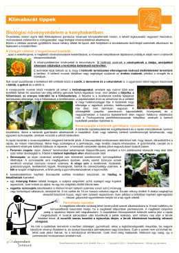 Klímabarát tippek Biológiai növényvédelem a konyhakertben