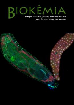 A Magyar Biokémiai Egyesület internetes folyóirata