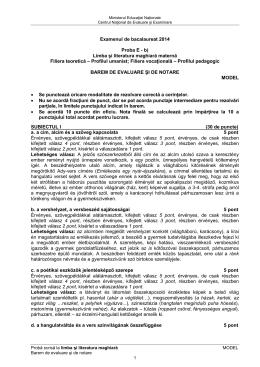 b) Limba şi literatura maghiară maternă Filiera